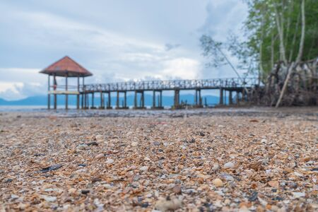 Scattered shells on a black beach. black sand beach is in Trat Thailand. Black sand has many medicinal properties. Travelers prefer to sleep in the sand. Or take a foot soaked in sand