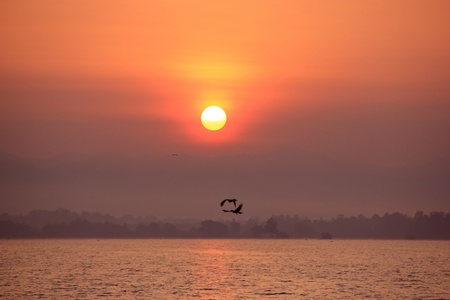flying towards the sun