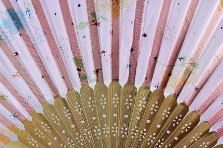 Painted hand fan with birds and flowers isolated on white Stock Photo - 14342465