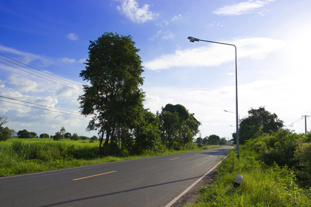 Beautiful images of asphalt  Trees along the way