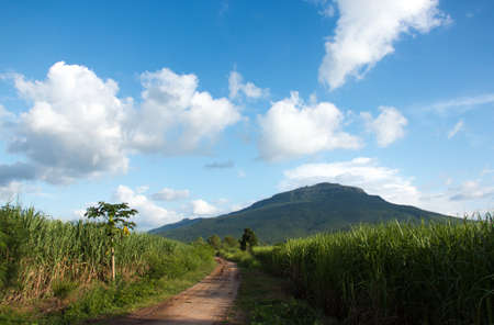 Gravel road Crops and mountain scenery