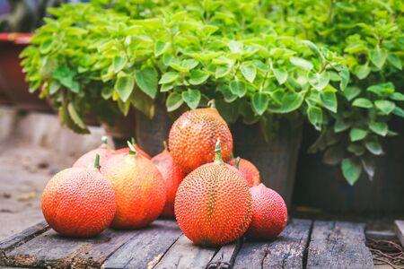 lowkey: Baby Jackfruits