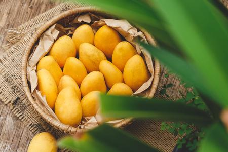 Fresh little mangoes