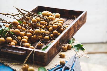 ベトナムから新鮮なリュウガン果実 写真素材
