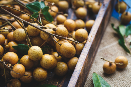 Fresh Longan Fruits from Viet Nam
