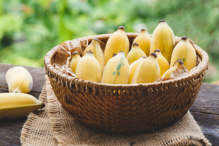 Vietnamese bananas Stock Photo