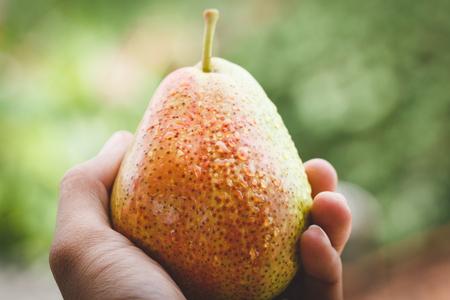 Fresh Forelle Pear