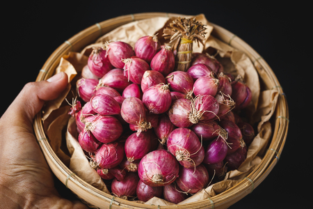 Shallots-Onions Banco de Imagens