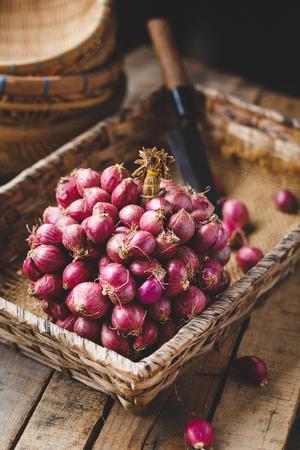 Shallots-Onions Banco de Imagens - 109648449