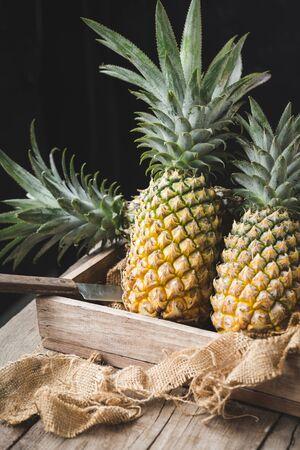 Fresh pineapples on the dark background Banco de Imagens
