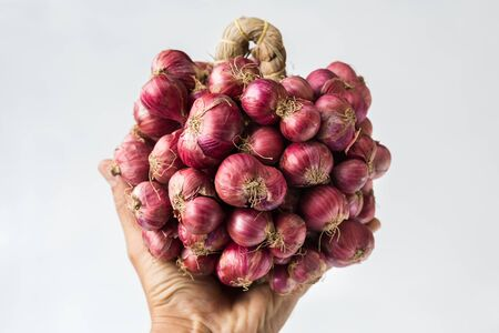 Fresh shallots on the white background Stockfoto