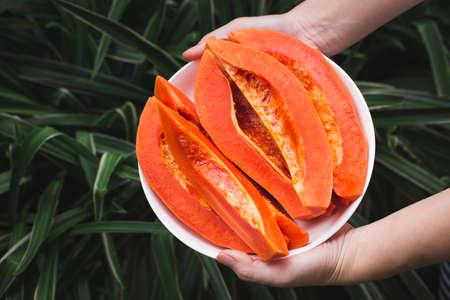 Fresh papaya fruit-Healthy fruit 版權商用圖片 - 152115751