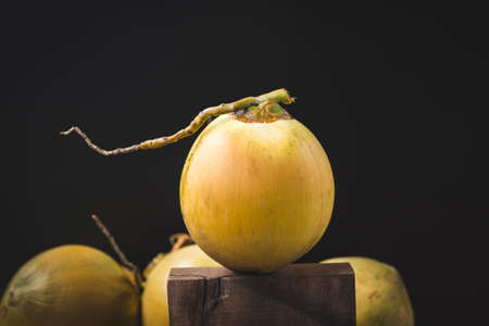 Fresh coconut-Healthy fruit 免版税图像 - 152115813