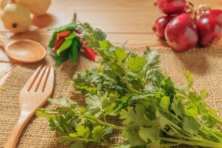 Coriander is a vegetable, spice and has many benefits.