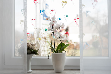 Orchid at window with hearts Archivio Fotografico