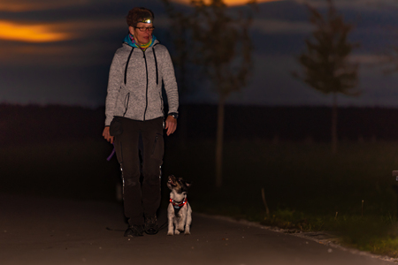 Mujer va con un perro caminando en el otoño por la noche con linterna - jack russell terrier doggy