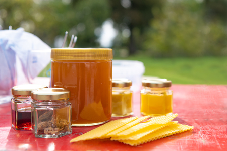 various products such as propolis, honey wax plates against blurred green background