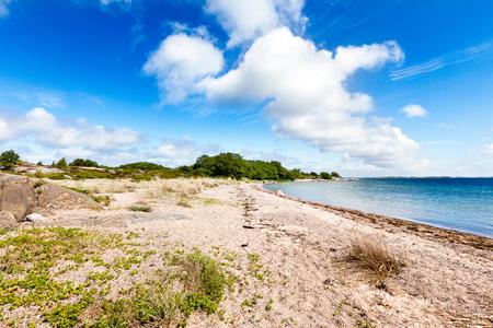 sea grass: Sandy shore on an island in scandinavian archipelago on a sunny day