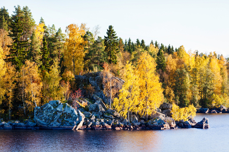 Golden autumn forest and large rocks by a lake in sunshine photo