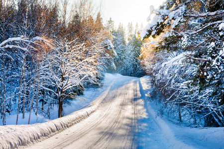 Small country road in winter with sunshine on trees photo