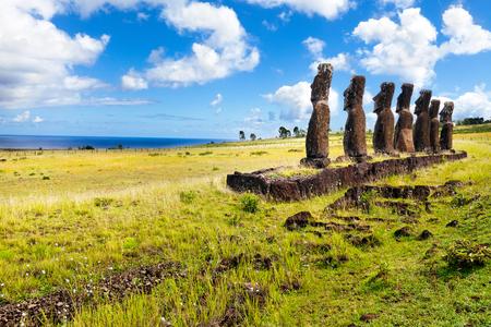 rapa nui: Moais en pie mirando la mar en la isla de Pascua en el día soleado