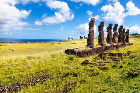 rapa: Standing moais looking at sea in Easter Island on sunny day