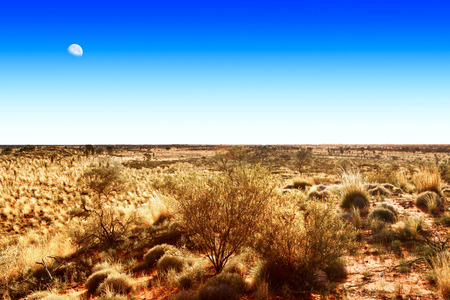 Moon on blue sky over Australian outback 版權商用圖片 - 34315480