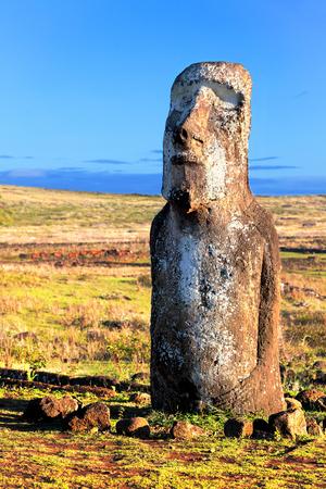 rapa: Standing moai in bright sunshine in Easter Island Stock Photo