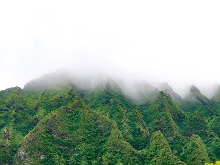 Lush green mountain tops disappearing into fog
