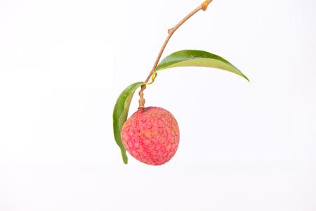 litschi: Fresh lychees isolated on white background.