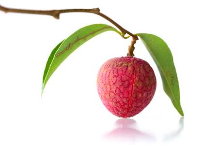 lechee: Litchi chinensis isolate on white background.