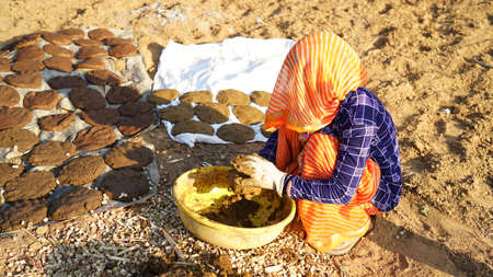 Traditional Indian woman with covering face and making handcraft Cow dung cakes for Holi festival. Religious cow dung cakes for Holi festival in India.