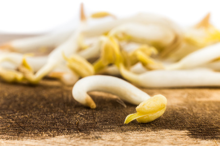 beansprouts: Close up of bean sprout on wooden chopping board