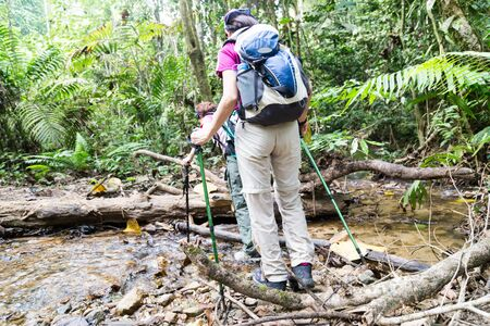 Two female hiking in a tropical forest photo