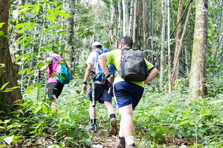 Group of people hiking in a tropical forest photo