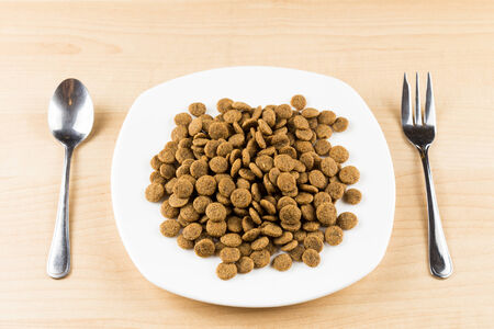 dog biscuit: A plate with dog kibbles served on wooden top table