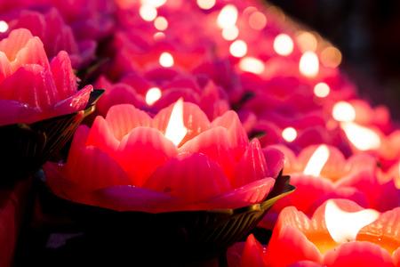 Lotus candle light illuminate a dark surrounding