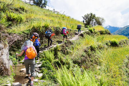 trekking pole: A group of people trekking through a terrace farm Stock Photo