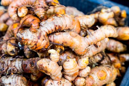 heaps: Heaps of freshly harvested turmeric roots Stock Photo