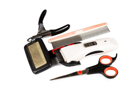 grooming: Dog grooming tools and accessories set