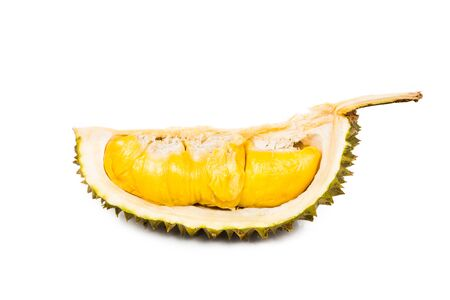 king of thailand: Freshly harvested durian fruit with delicious golden yellow soft flesh Stock Photo