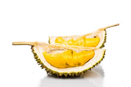 king of thailand: Freshly harvested durian fruit of the top grade Musang King variety with delicious golden yellow soft flesh Stock Photo