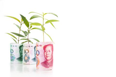 china: Concept of green plant grow on China Yuan Renminbi currency note.