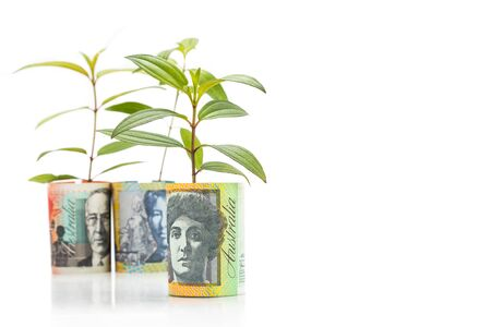 grow money: Concept of green plant grow on Australian Dollar currency note.