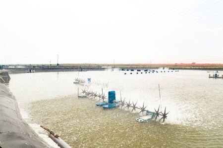 creador: Peces Acuicultura y la granja de gambas con el creador de la onda para hacer circular el agua.