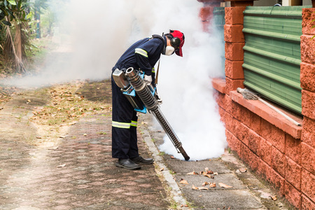 aedes: Worker fogging drain at residential area with insecticides to kill aedes mosquito, carrier of dengue virus Editorial