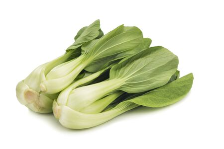 green vegetable: Fresh green leafy bok choy vegetable isolated in white