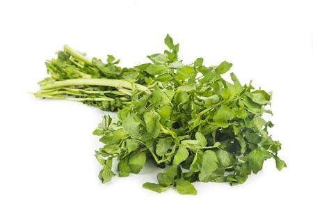 berros: Manojo de berros recién cosechado rico en vitamina y nitrato