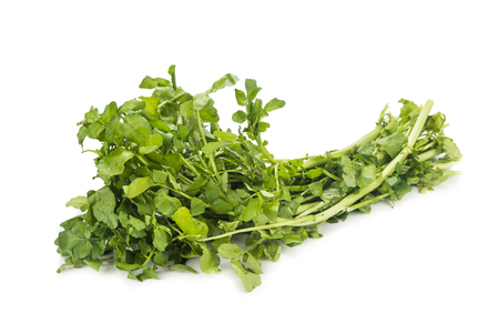 water cress: Bundle of freshly harvested watercress rich in vitamin and nitrate