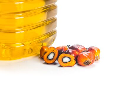 bio diesel: Refined palm oil in bottle with fresh oil palm fruits